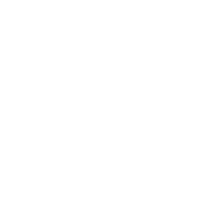 55% conduct marketing-driven segmentation in email